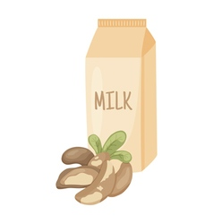 Brazilian nut milk vector