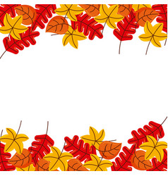 autumn leaves season floral design border frame vector image