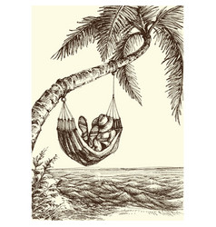 beach palm tree and hammock sea view vector image