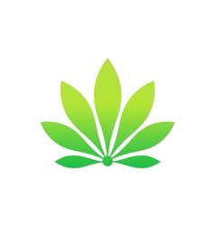 Beauty green flower eco botany logo vector