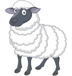 sheep cartoon vector image