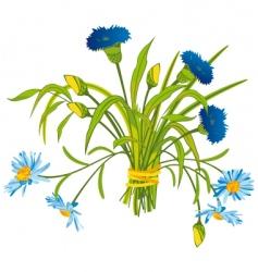 field flowers vector image