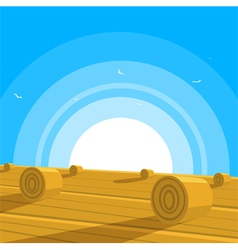 Field with bales of hay vector image