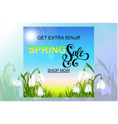 Spring background with snowdrop flowers green vector
