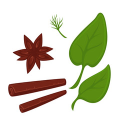 Cinnamon in tube and star shapes and fresh vector