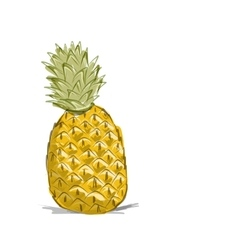 Sketch of pineapple for your design vector