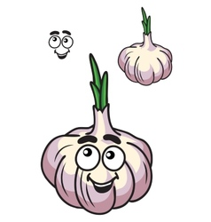 Healthy fresh garlic vegetable vector