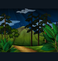 background scene with trees in the forest vector image vector image