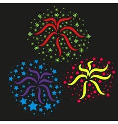 Festive fireworks vector