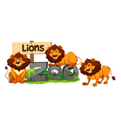 Three lions in the zoo vector