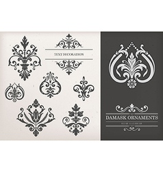 Vintage damask ornaments vector