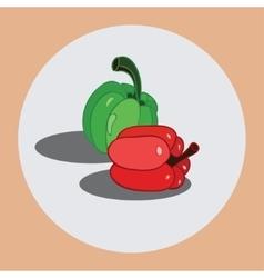 Bulgarian pepper vector image
