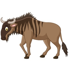 Strong of animals wildebeest vector image