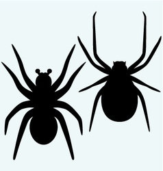 Set spider icon vector