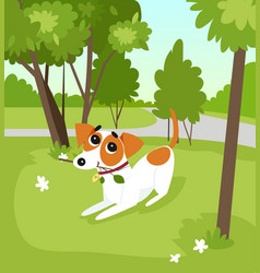 Cute jack russell terrier dog running with stick vector