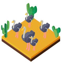 Desert scene with ostriches in 3d design vector