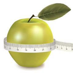 green apple measured the meter vector image vector image