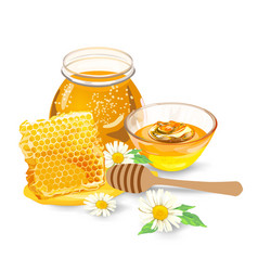 honey with wood stick and flowers vector image vector image