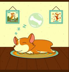 Sleeping cute welsh corgi dog on mat sweet puppy vector