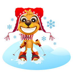 yellow dog skier in red hat skiing vector image