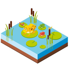 frogs and dragonflies in 3d design vector image vector image