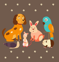 Images of domestic animals cat parrot dog snail vector