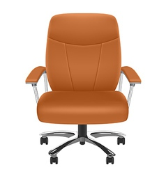 Leather Chair vector image vector image