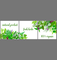 wreath made of realistic herbs and flowers with vector image vector image