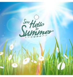 Sunny natural background with sun and grass vector image