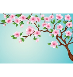 blossoms tree vector image vector image