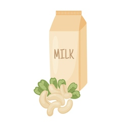 Cashew milk vector