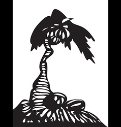 Palm tree with coconuts isolated vector