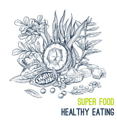 superfood poster hand drawn sketch vector image