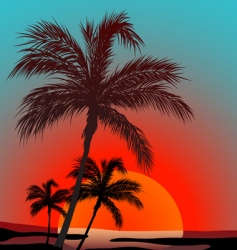 sunset with palms vector image