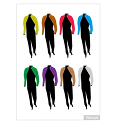 Set of Wetsuit or Diving Suit on White Background vector image vector image