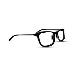 Black and white glasses vector