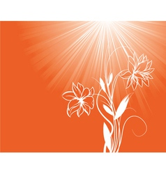 Floral background with rays vector