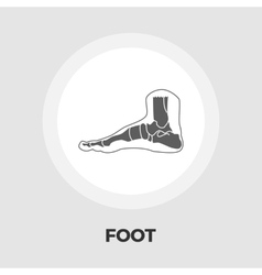 Foot anatomy flat icon vector image