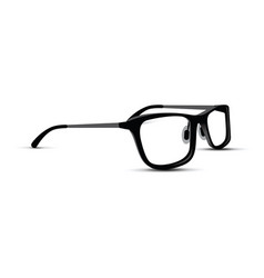 black and white glasses vector image vector image