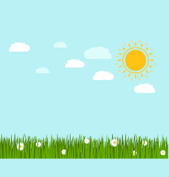 Spring green grass and chamomile landscape vector