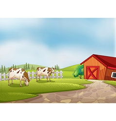 Two cows at the farm with a barn and fence vector image vector image