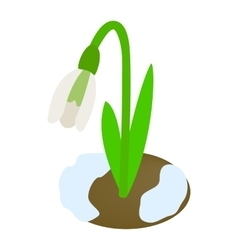 White snowdrop icon isometric 3d style vector