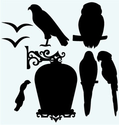 Set Birds vector image