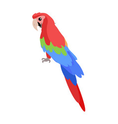 Ara parrot cartoon icon in flat design vector