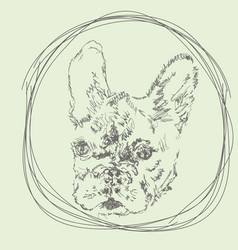 French bulldog hand-drawn logo vector