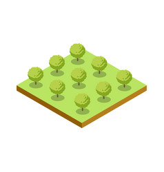 green bushes isometric 3d icon vector image
