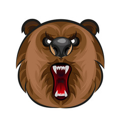 Russian angry bear vector