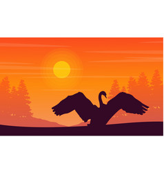 silhouette of swan on orange background landscape vector image