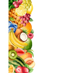 Watercolour fruit banner for your design vector