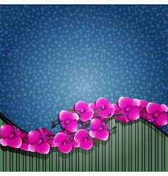 orchid with a blue vector image